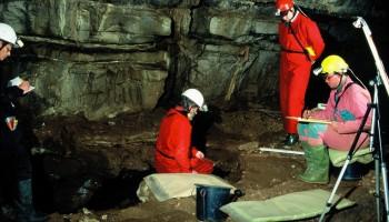 Arheološka izkopavanja kosti