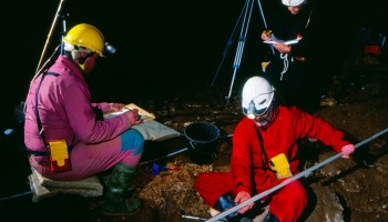Izkopavanja kosti leta 2001