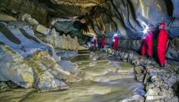 Ob jamskem potoku