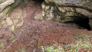 Stari vhod v Golobino