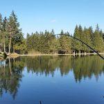 glamping-blosko-jezero